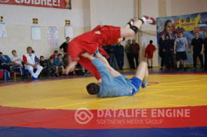 13 Краевой турнир по борьбе самбо, посвященный Дню Победы