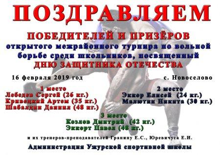 Открытый межрайонный турнир по вольной борьбе